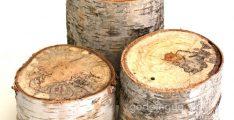 Gỗ phong bàn (gỗ birch)