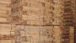 Chất lượng gỗ tràm